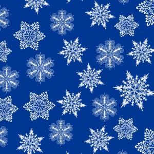 Roue Chute de neige 2