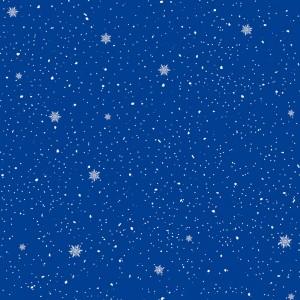 Roue Chute de neige 1